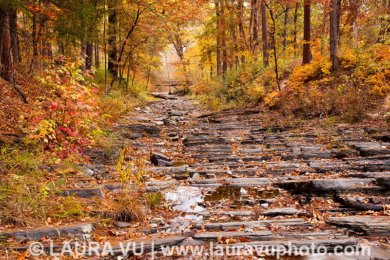 Fall foliage in Beavers Bend State Park in Broken Bow, Oklahoma