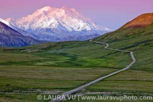 Road to Denali - Denali National Park, Alaska