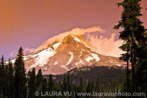 Morning Glory - Mt. Hood, Oregon