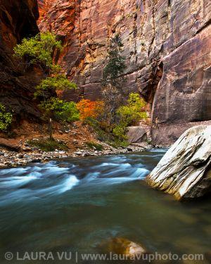 River of Life - Zion National Park, Utah