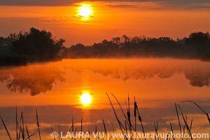 Rising Sun - Bristol, Texas